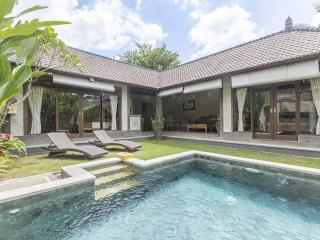 Fabulous New Villa/Tranquil/Excellent Location - Ubud vacation rentals
