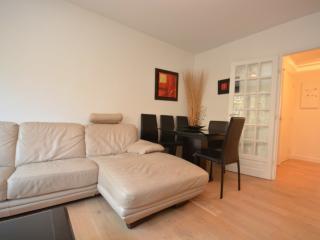 Classy 2BDR apartment Paris 15eme - Paris vacation rentals