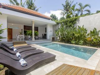 2BR Villa PURIS in the HEART of SEMINYAK - Seminyak vacation rentals