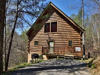 Secluded Romance a one bedroom Pigeon Forge cabin minutes from Dollywood. - Sevierville vacation rentals