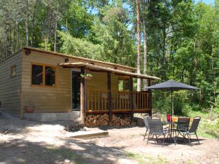 Delightful Wood Chalet located in Central France. - Argenton-sur-Creuse vacation rentals
