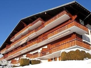 Beautiful 1 bedroom Condo in Gryon - Gryon vacation rentals