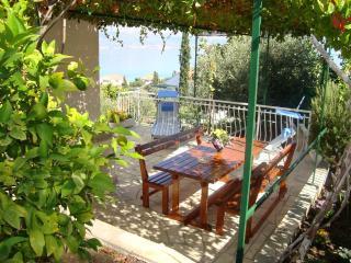 Spacious apartment for two familes - Arbanija vacation rentals