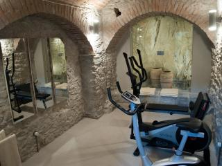 Gym Suite (Luxury Apartments) - Manarola vacation rentals