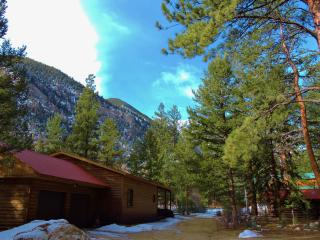 Canyon Cabin - Nathrop, near Buena Vista & Salida - Nathrop vacation rentals