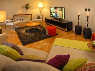 Massive 3 bedroom 2.5 bath Great Palermo location! - Buenos Aires vacation rentals