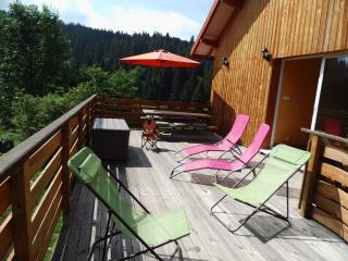 Gîte de 93m², à 820m d'altitude, en pleine nature - Ban-sur-Meurthe-Clefcy vacation rentals