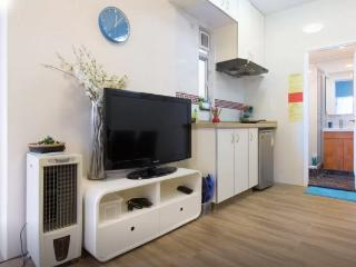 Simple 3 Bdr Apt Sleeps 5-8 ppl next to MRT 15D - Hong Kong vacation rentals