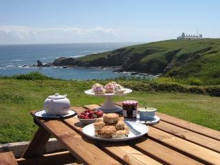 4 bedroom House with Internet Access in Cadgwith - Cadgwith vacation rentals