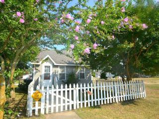 Charming 2 bedroom Vacation Rental in Chincoteague Island - Chincoteague Island vacation rentals