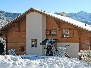 Sunny Condo with Internet Access and Dishwasher - Gryon vacation rentals