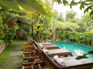 Villa Ibu, Rice Fields, Wifi, Pool, Walk to Yoga - Ubud vacation rentals