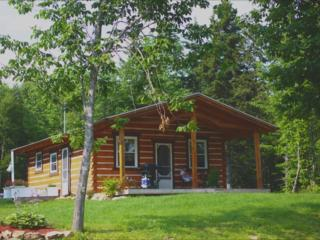 Modern Log Cabin (25 min drive from Baddeck) - Baddeck vacation rentals