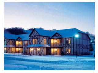2 Bedroom Condo at Mountain Run at Boyne - Boyne Falls vacation rentals