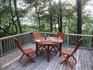 IDEAL RETREAT, OVERLOOKS POND, NATIONAL SEASHORE - Wellfleet vacation rentals