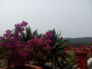 Green villa homestay, ambatty, virajpet - Virarajendrapet vacation rentals