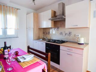 Small peaceful place - apartment 60m from sea - Razanac vacation rentals