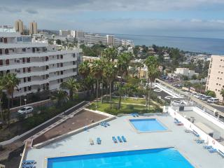 300 metres to ocean, beauty views - Costa Adeje vacation rentals