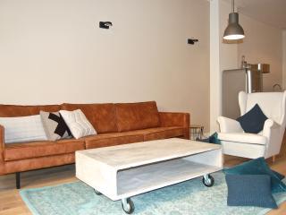 Luxurious City Apartment - Utrecht vacation rentals