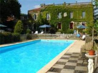 Beautiful 3 bedroom Chateau in Fontenay-le-Comte with Internet Access - Fontenay-le-Comte vacation rentals