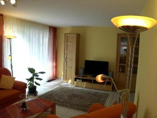 LLAG Luxury Vacation Apartment in Baden Baden - 700 sqft, allergy-friendly - Baden-Baden vacation rentals