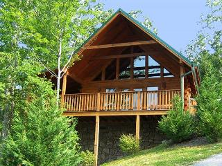 Whisper Mountain  Hot Tub Privacy Mountain View Pets WiFi  Free Nights - Gatlinburg vacation rentals