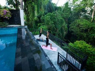 Sommelier Studio - Maison Rouge - Ubud vacation rentals