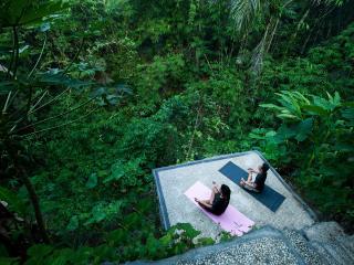 Maître d' Studio - Maison Rouge - Ubud vacation rentals