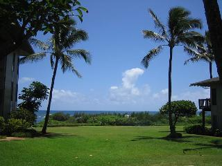 Kaha Lani #115, Ocean View, Ground Floor, Steps to Beach & Coastal Bike Path - Lihue vacation rentals
