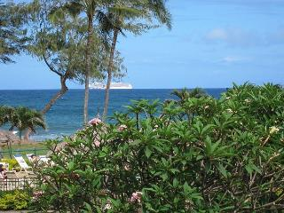 Islander on the Beach #201, Ocean View Studio, Beachfront, Air Conditioned! - Kapaa vacation rentals