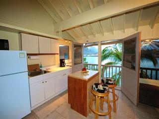 Pali Kai Studio 17 C, Ocean-Bluff with AC & Kaua'i Marriott Resort Use! - Lihue vacation rentals