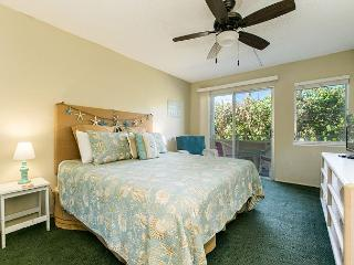 Plantation Hale B6, Near shops, restaurants and beaches.  Air conditioned! - Kapaa vacation rentals
