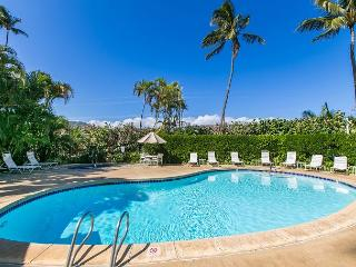 Plantation Hale D13, Near shops, restaurants and beaches.  Air conditioned! - Kapaa vacation rentals