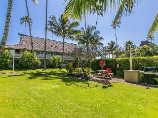Plantation Hale Suites D2, Walk to Town, AC in Unit, $99/Night Special - Kapaa vacation rentals