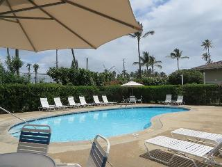 Plantation Hale F8, Near shops, restaurants and beaches.  Air conditioned! - Kapaa vacation rentals