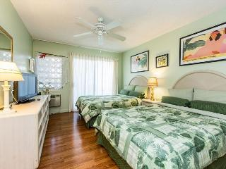 Plantation Hale G7, Near shops, restaurants and beaches.  Air conditioned! - Kapaa vacation rentals