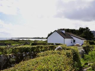 Cottage 176 - Roundstone - Inishnee Island Roundstone - Roundstone vacation rentals