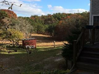 Charming Meadowside Home in Truro Close To Cape Cod Beaches - Sleeps 10 - Truro vacation rentals