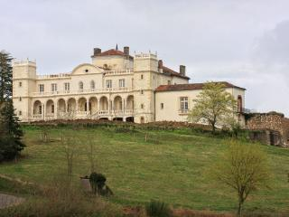 Nice Castle with Internet Access and A/C - Saint Sever vacation rentals