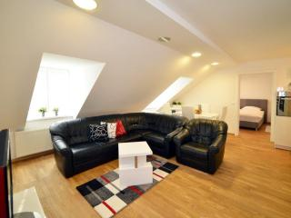 1 BEDROOM/50 m² APT IN VERY CENTER - Zagreb vacation rentals
