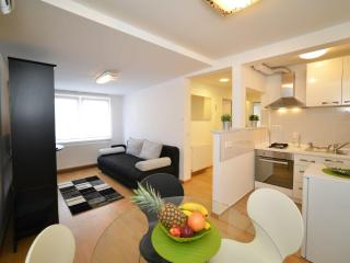 1 BEDROOM/35 m² APT IN VERY CENTER - Zagreb vacation rentals