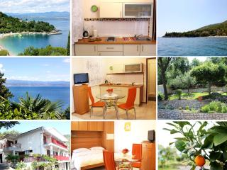 Lovely Studio Apartment - Medveja vacation rentals