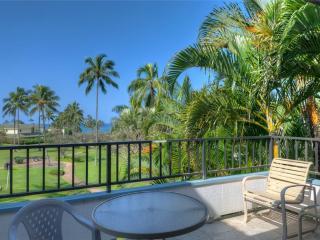 Comfortable 1 bedroom Apartment in Poipu - Poipu vacation rentals