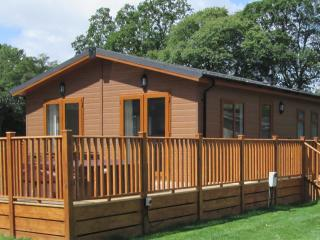3 Bedroom Deluxe Lodge at Woodlands Park - Hastings vacation rentals
