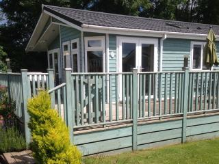 2 Bedroom Deluxe Lodge at Blossom Hill - Honiton vacation rentals