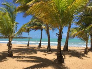 Beach Front !! 10 min to National Rain Forest - Luquillo vacation rentals