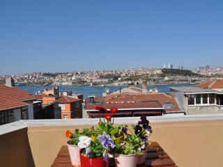 Private Charming  Room & Historic Local Experience - Istanbul vacation rentals