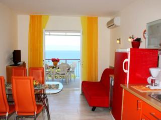 Spacious Apartment - Amazing View - Medveja vacation rentals