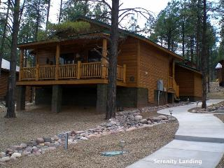 2 bedroom Cabin with Internet Access in Show Low - Show Low vacation rentals