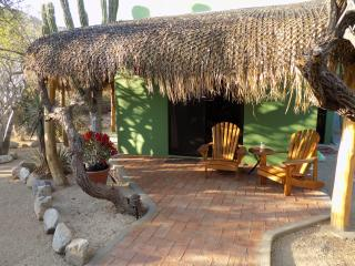 Casa Cactus ~ The Secret Garden - Cabo Pulmo vacation rentals